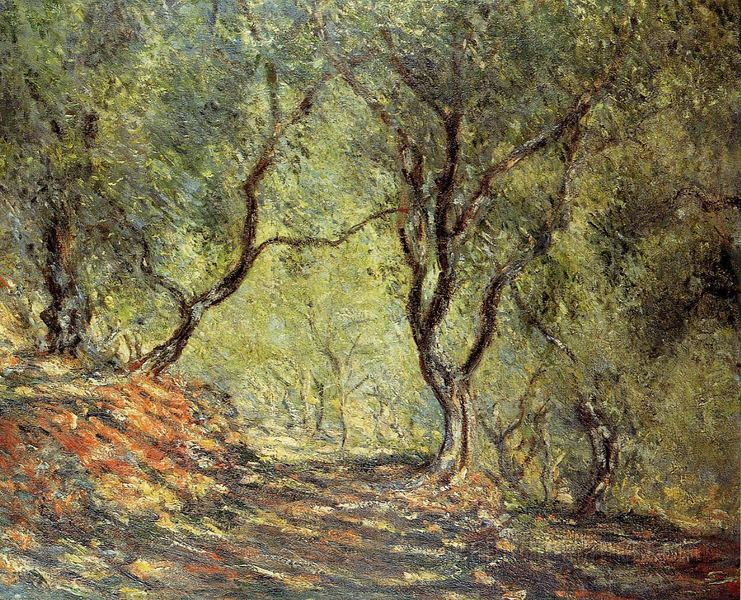 the-olive-tree-wood-in-the-moreno-garden-claude-monet-1884