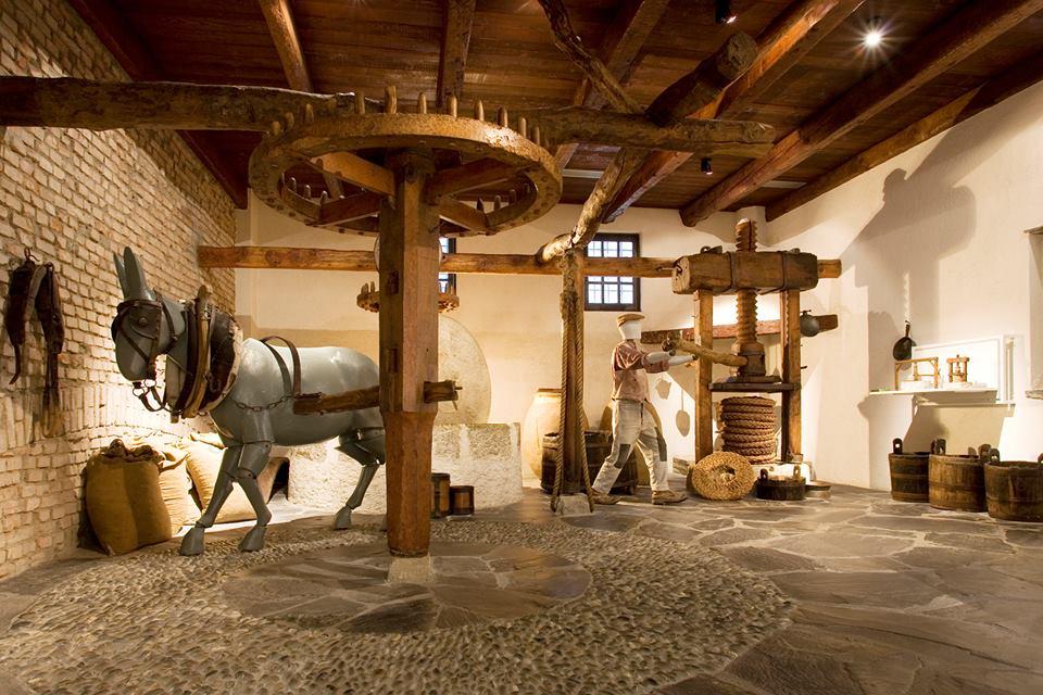 Cover Museo dell'Olio Carli