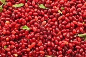 ciliegia-corniola