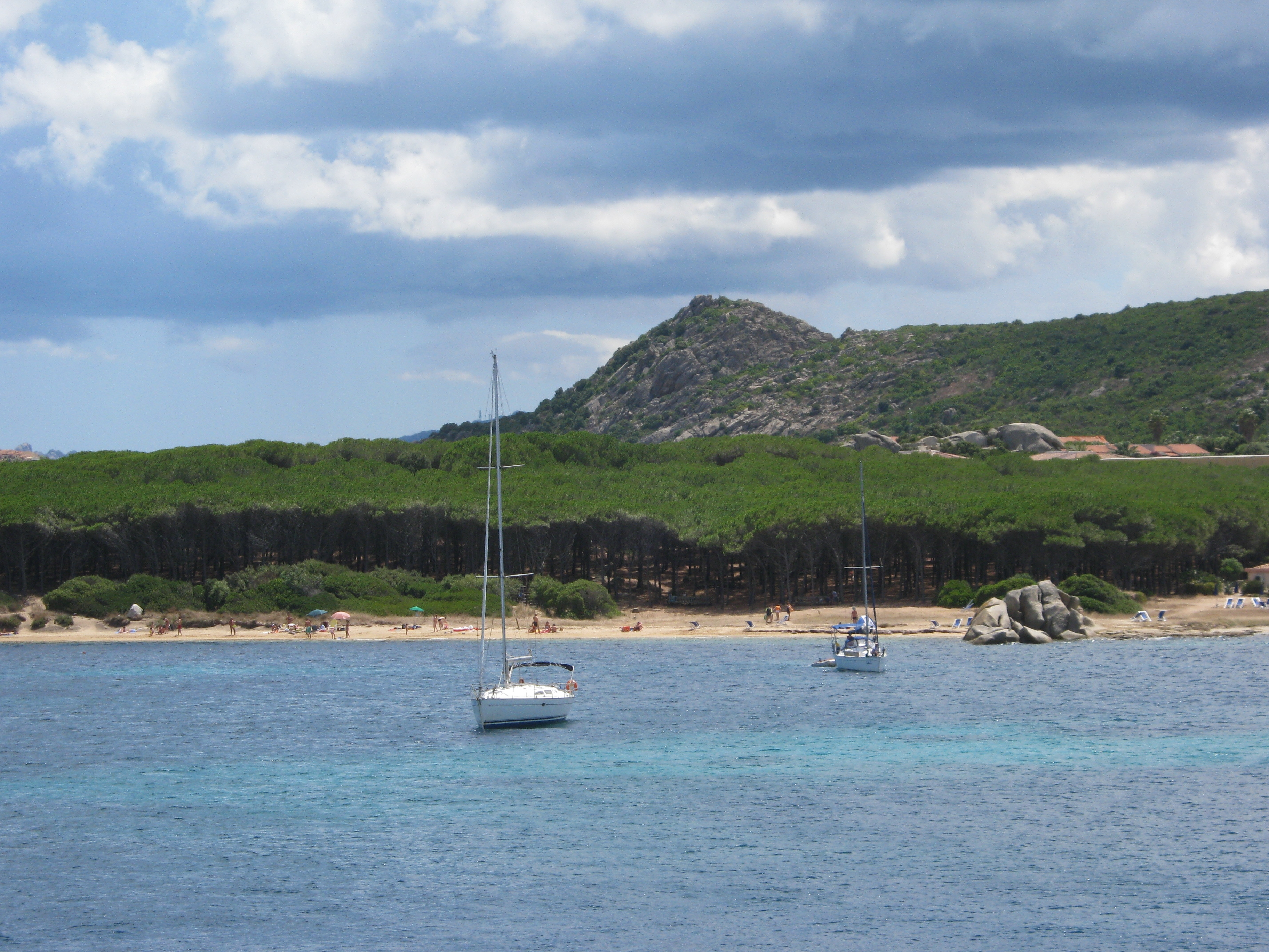 pineta-sul-mare