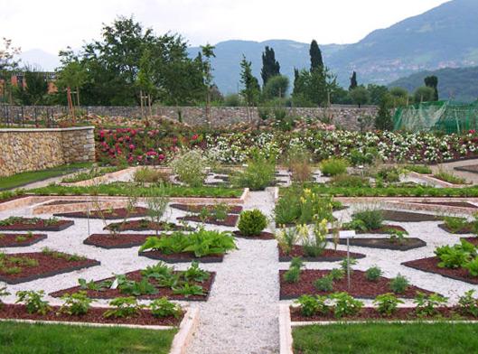 Cover Giardino botanico alpino di Passo Coe