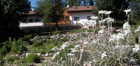 Cover Giardino botanico alpino Viote di Monte Bondone