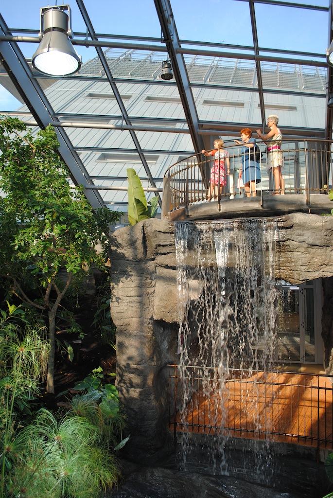 inaugurazione-del-muse-3-la-serra-tropicale-foto-albarello-