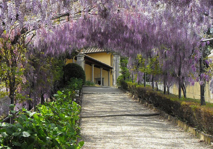 giardino-bardini-new05