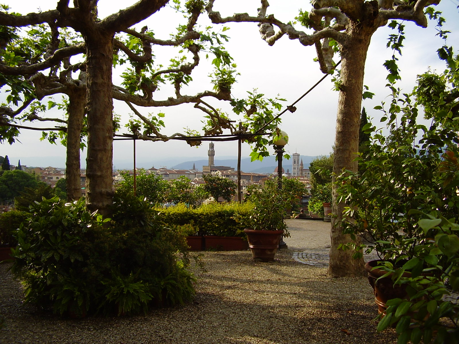 Giardino delle rose luoghi italianbotanicaltrips - Il giardino delle rose ...