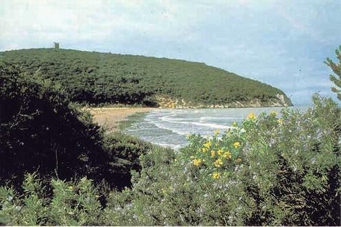 Cover Parco Regionale della Maremma