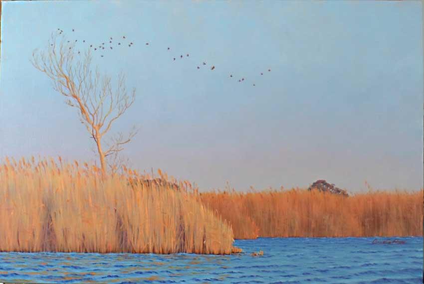 Cover Oasi WWF del Lago di Burano