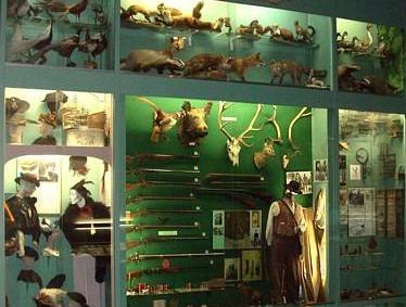 Cover Ecomuseo della Valle Oglio e Chiese