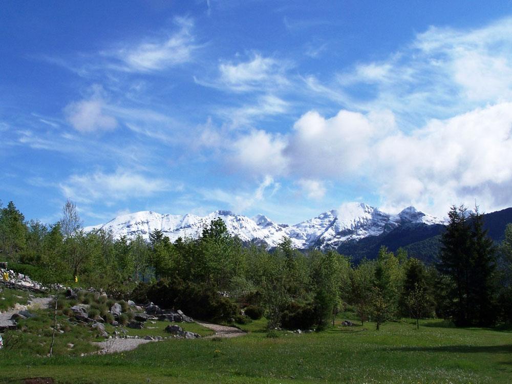 Cover Giardino botanico alpino del Cansiglio