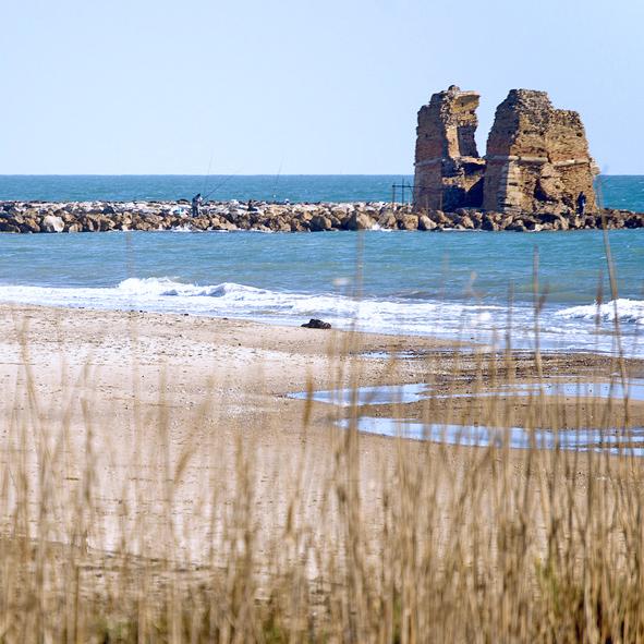 ladispoli-torre-flavia-spiaggia