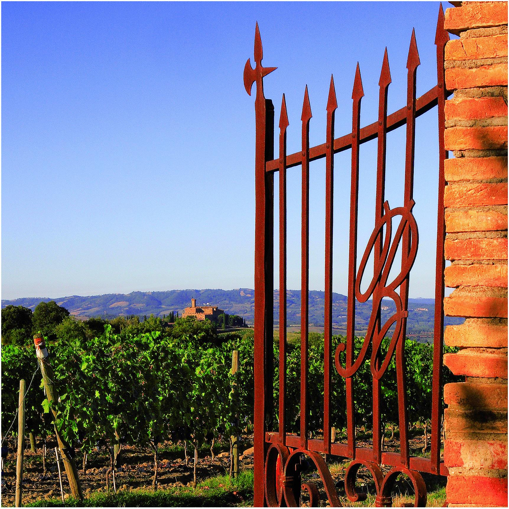 castello-banfi-cancello-2013