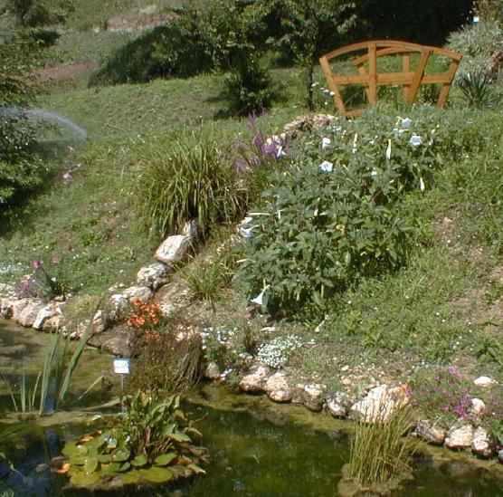 giardino-acquatico
