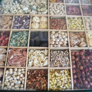 Cover Museo delle erbe di Veroli