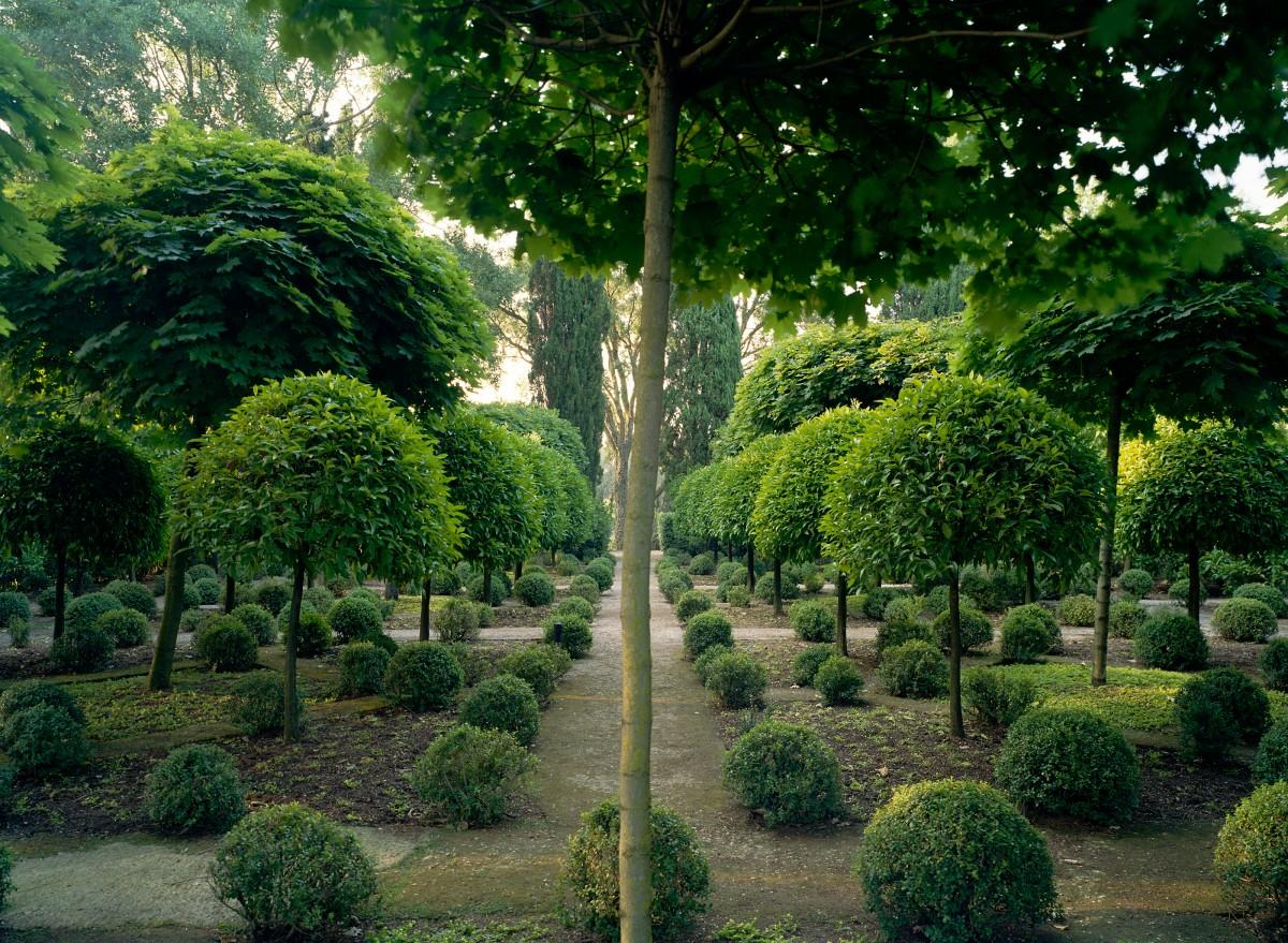 Cover Giardini della Landriana