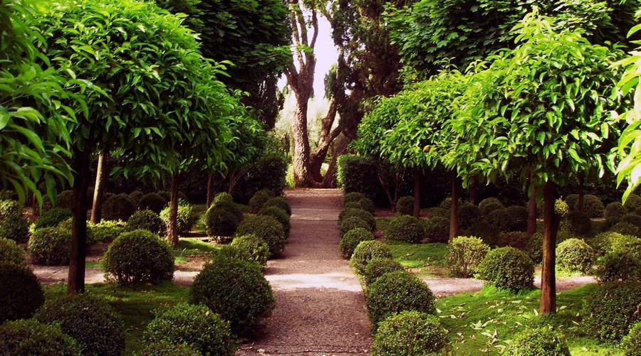 giardini-della-landriana-25-05-08-080