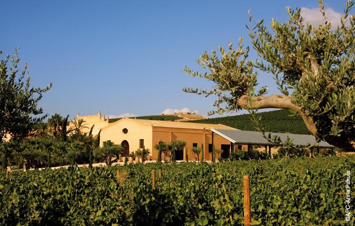 the-contessa-entellina-estate