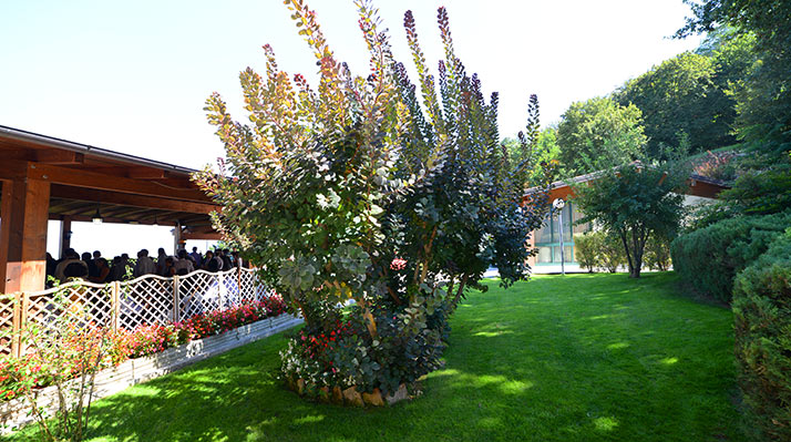 giardino04