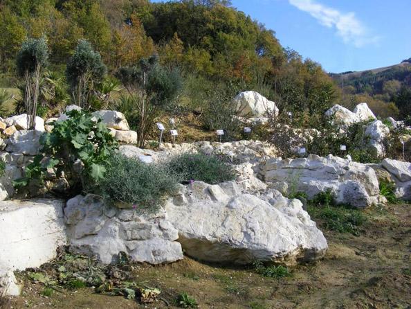 roccaglia-mediterranea