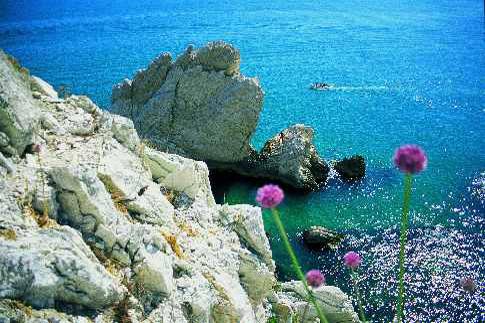 Cover Spiagge del Conero