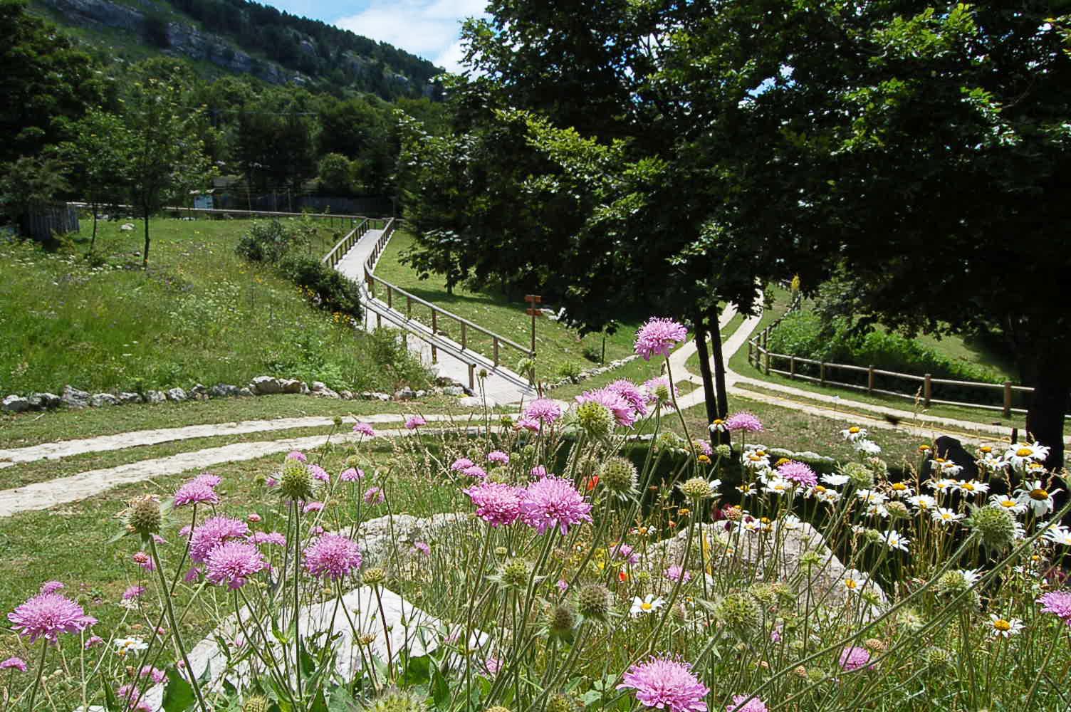 Cover Giardino della flora Appenninica