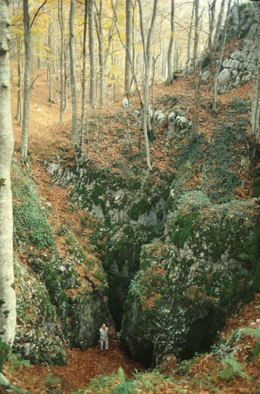 Cover Oasi WWF – Riserva Naturale Regionale Guardiaregia-Campochiaro