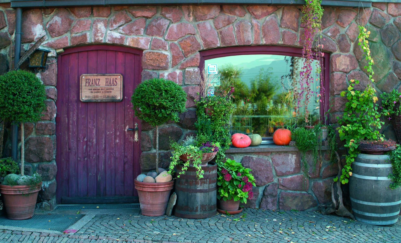 Cover Azienda vinicola Franz Haas