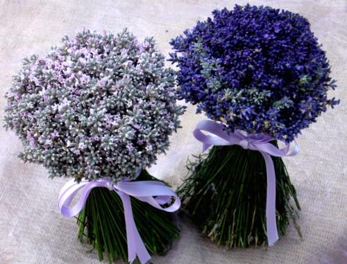 addobbi-per-matrimonio-bouquet-lavanda
