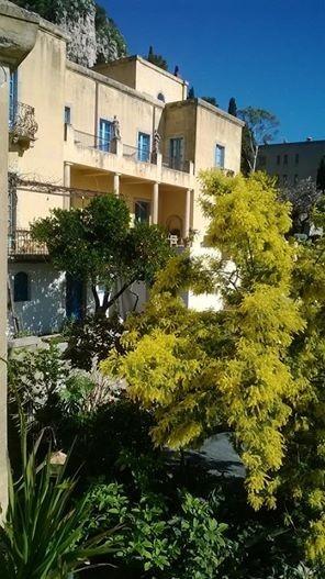 una-suggestiva-immagine-di-casa-cuseni-tra-le-mimose