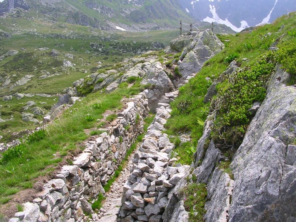 Cover Parco delle Orobie Valtellinesi