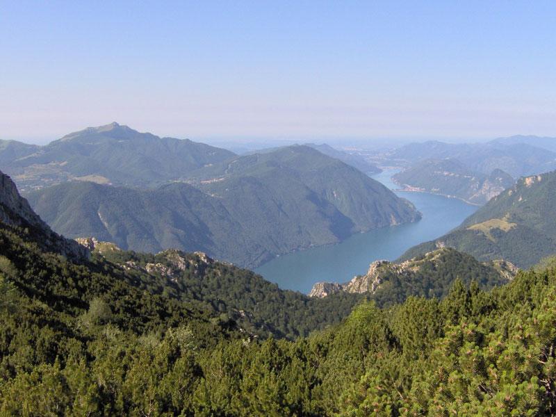 Cover Foresta regionale della Valsolda