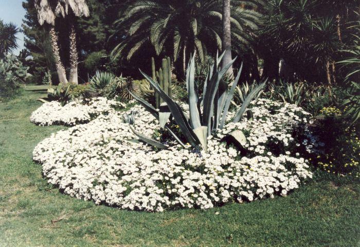 Cover Giardino del Biviere