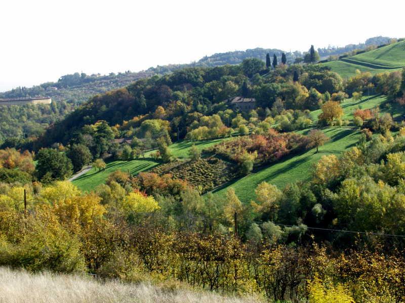 Cover Parco di Villa Ghigi
