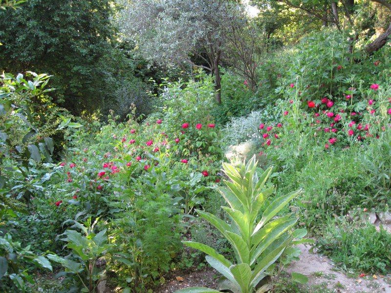 giardino-delle-erbe-3