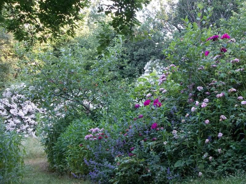 giardino-frutteto-1