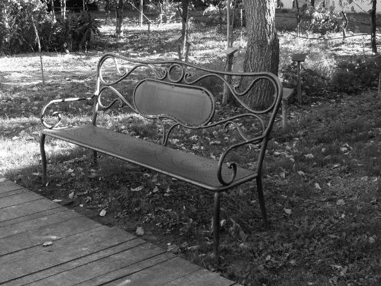 Orto botanico di palazzo graziani luoghi - Il giardino dei semplici ...