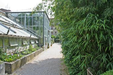 Cover Orto Botanico dell'Università di Ferrara