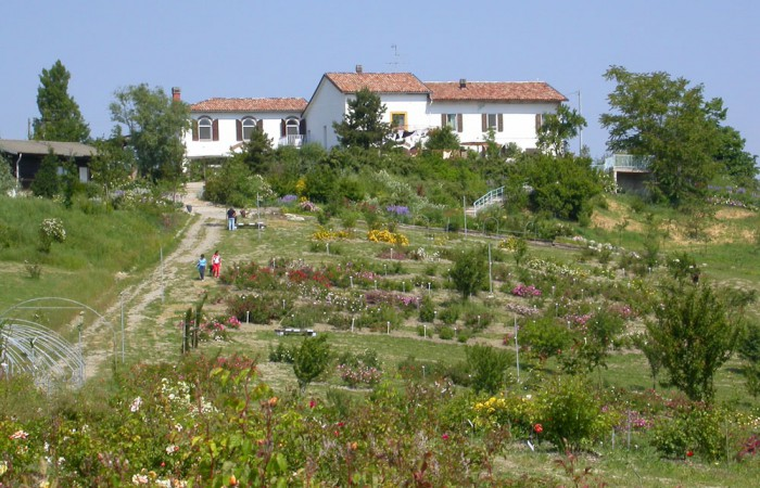 museo-rose-antiche-giardino-6-0737d8a727