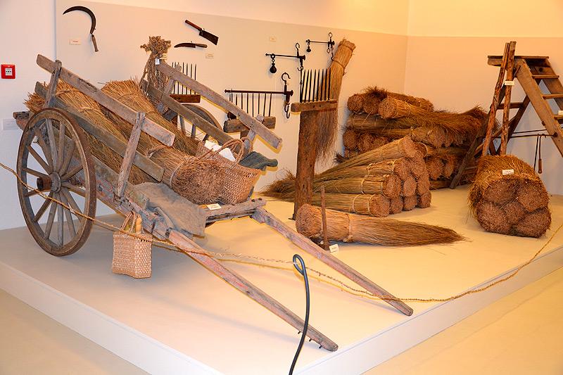 Cover Ecomuseo delle erbe palustri