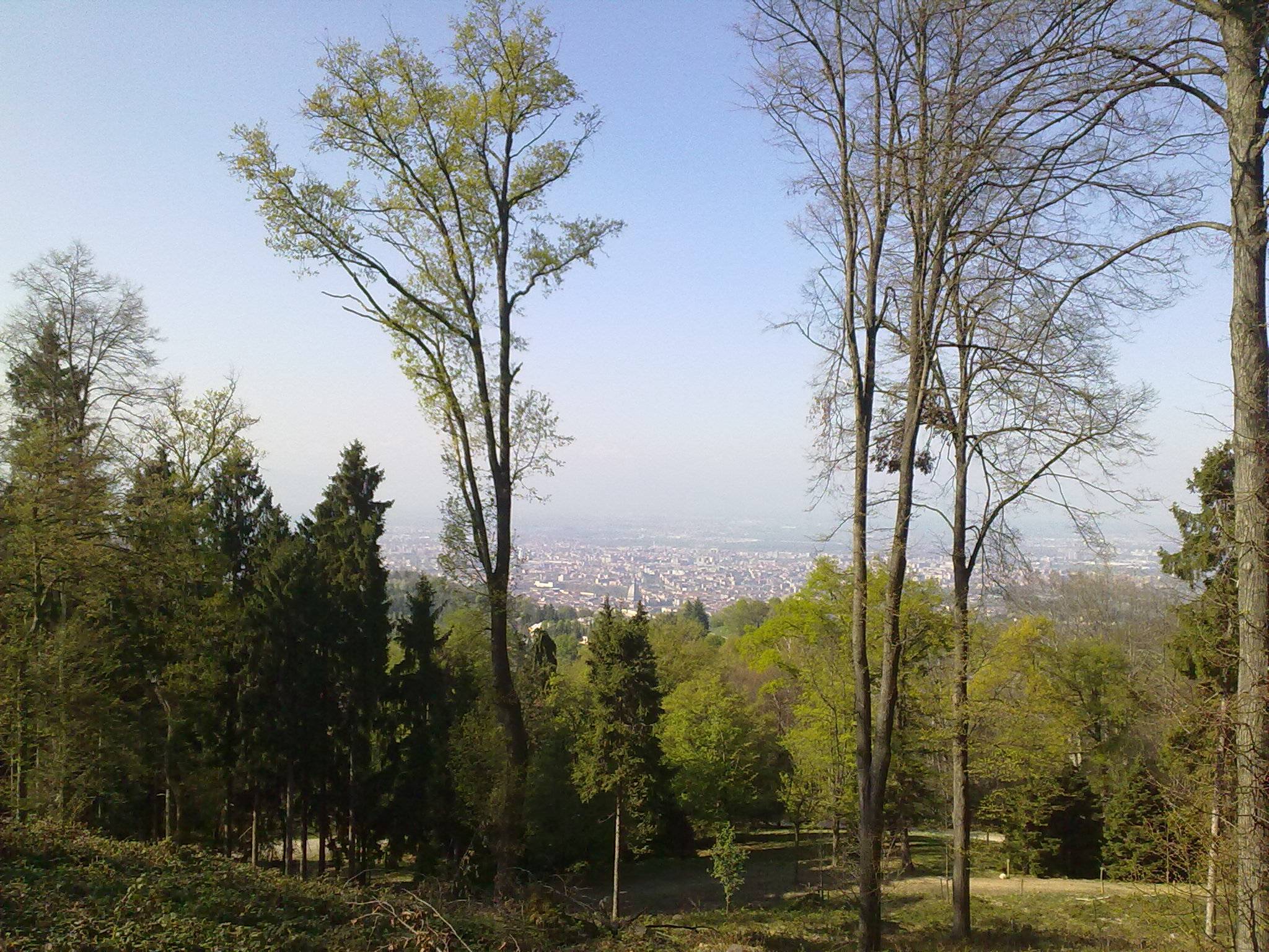 Cover Parco della Rimembranza di Moncalieri e Arboretum Taurinense