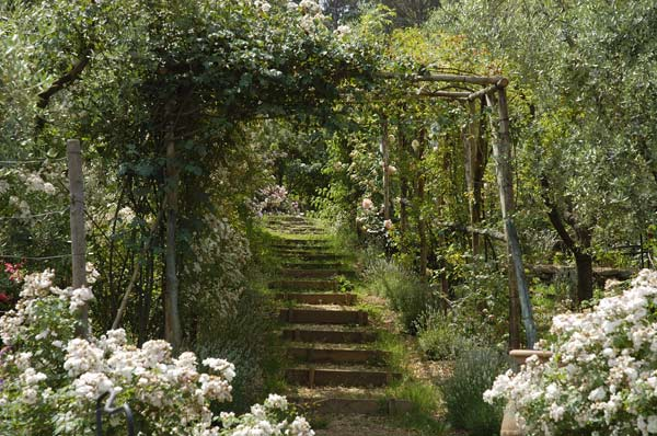giardino-4