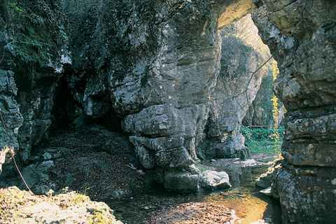 Cover Parco Naturale del Monte Fenera