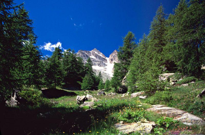 parco-nazionale-gran-paradiso_1404034665