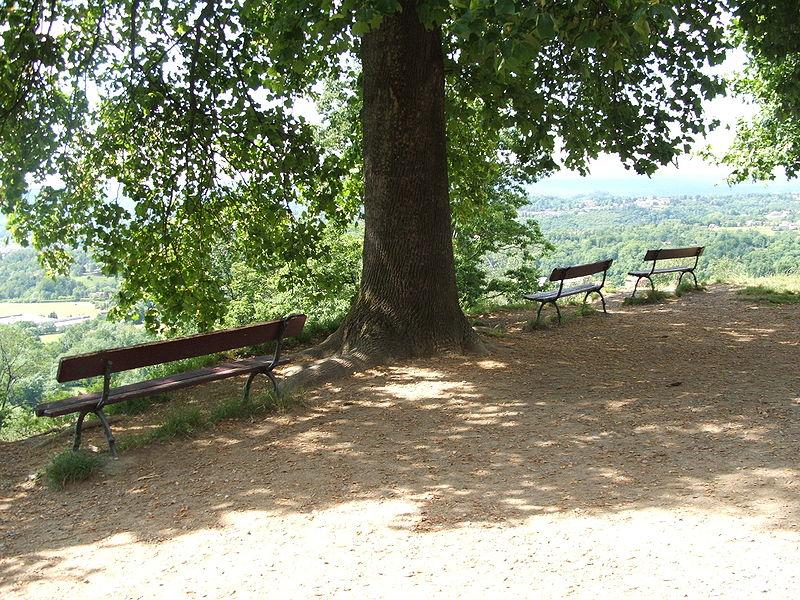 800px-parco-della-burcina-dscf0178