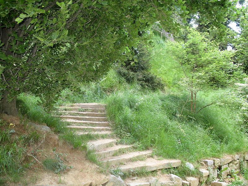800px-parco-della-burcina-img-0726bis