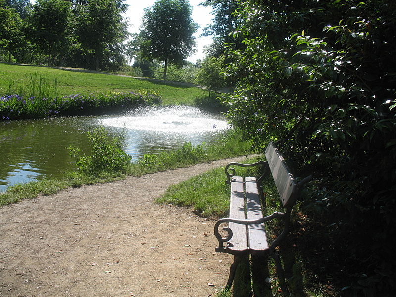 800px-parco-della-burcina-img-0731