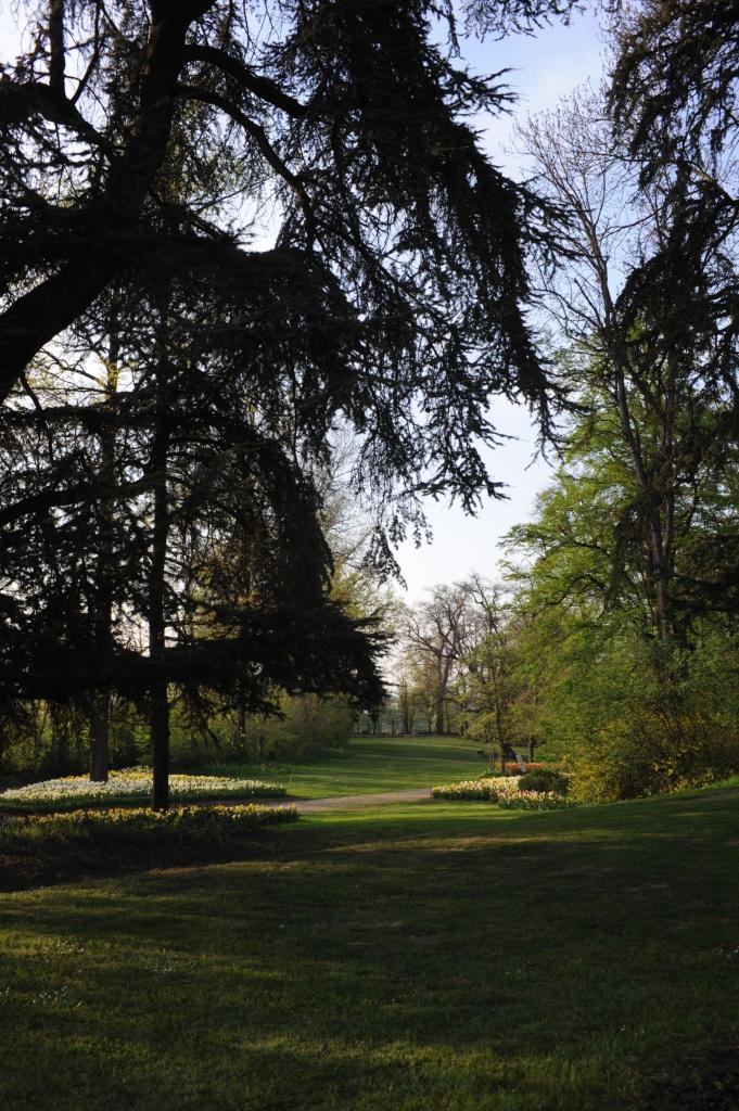 il-parco-in-primavera-1