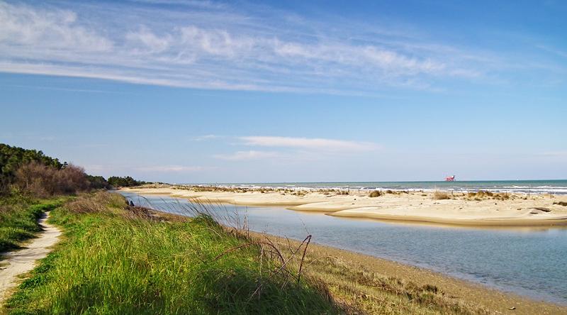 Cover Riserva Naturale Duna costiera ravennate e foce del torrente Bevano
