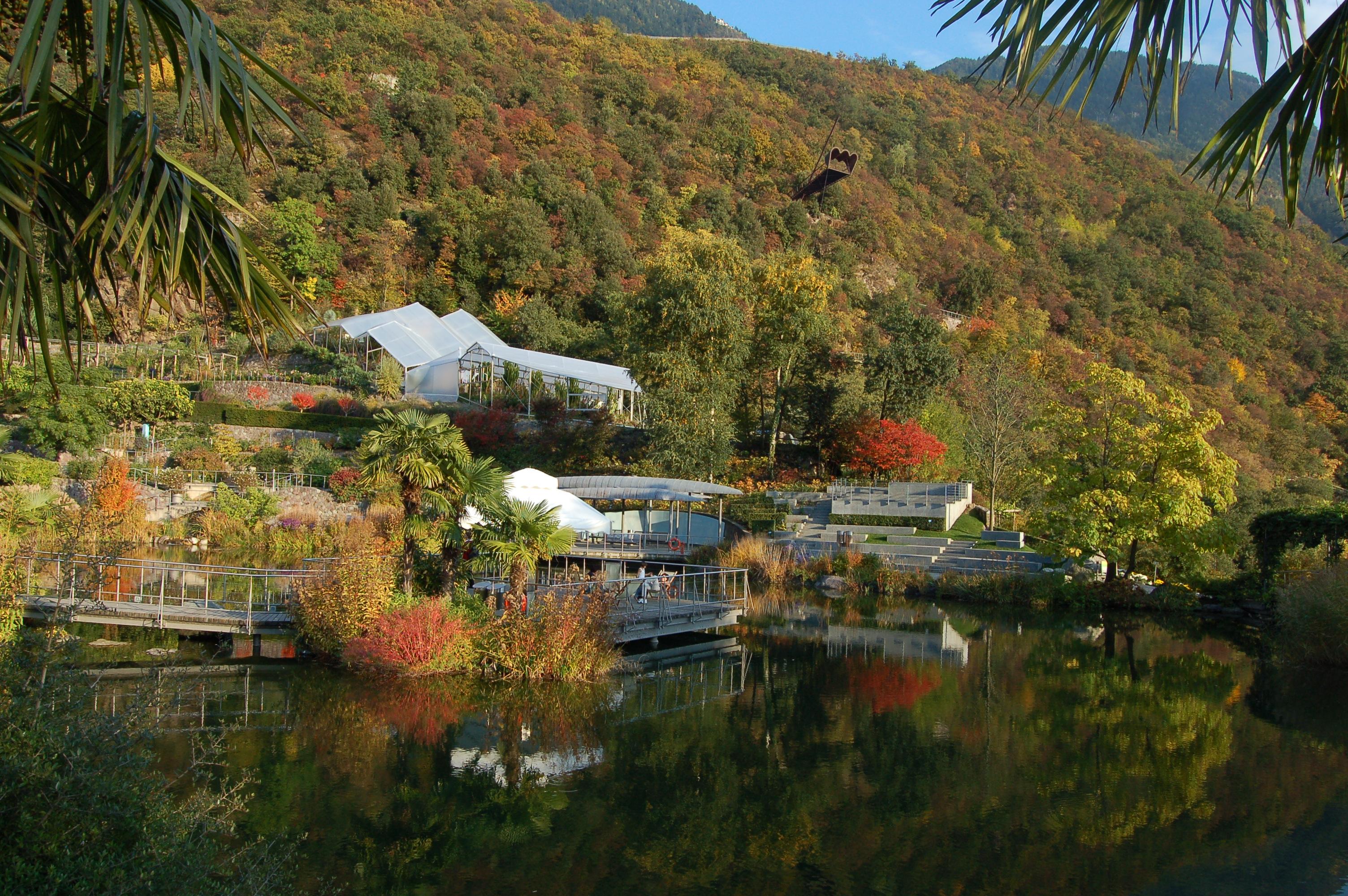 Laghetto delle ninfee ai giardini di sissi in autunno for Laghetto i giardini