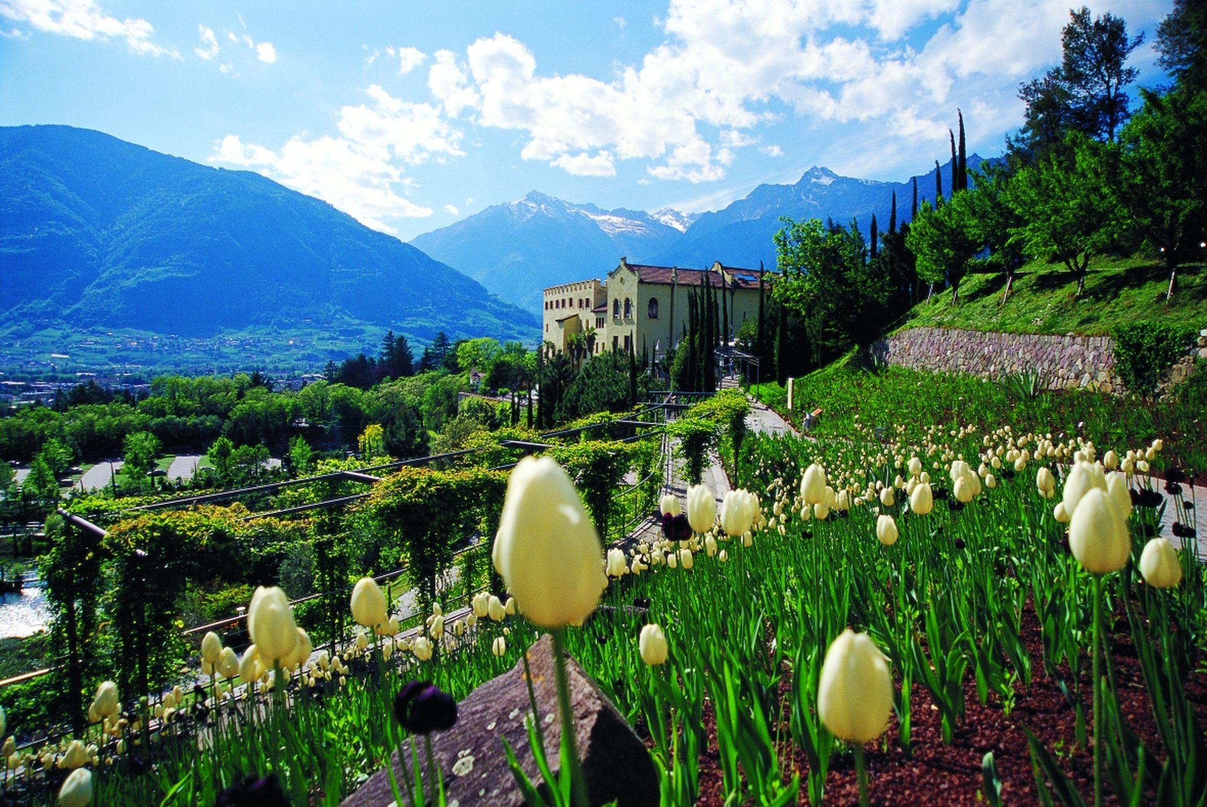 tulipani-ai-giardini-di-castel-trauttmansdorff-merano