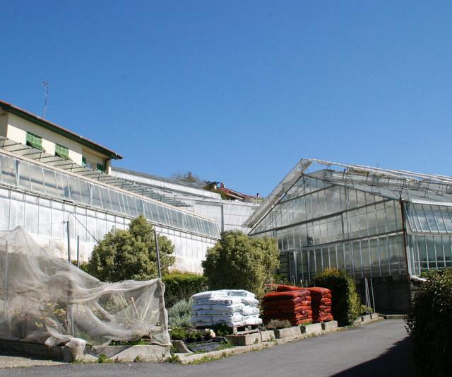 Cover Istituto Sperimentale per la Floricoltura (Villa Bel Respiro)